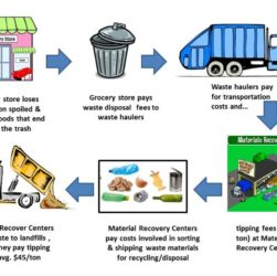 The Waste Disposal Process